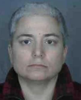 Brooklyn woman stabs herself blames ex-husband, False Allegations, Abuse